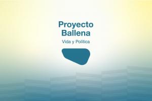 Llega la primera edición de Proyecto Ballena